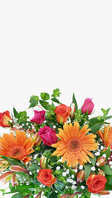 banner1-1 Home Flowers